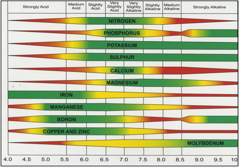 Want To Worry Less About Micronutrients Get Your Ph Right