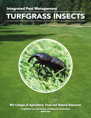 IPM1020: Turfgrass and Insects