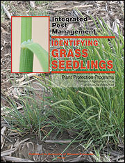 IPM1024: Identifying Grass Seedlings